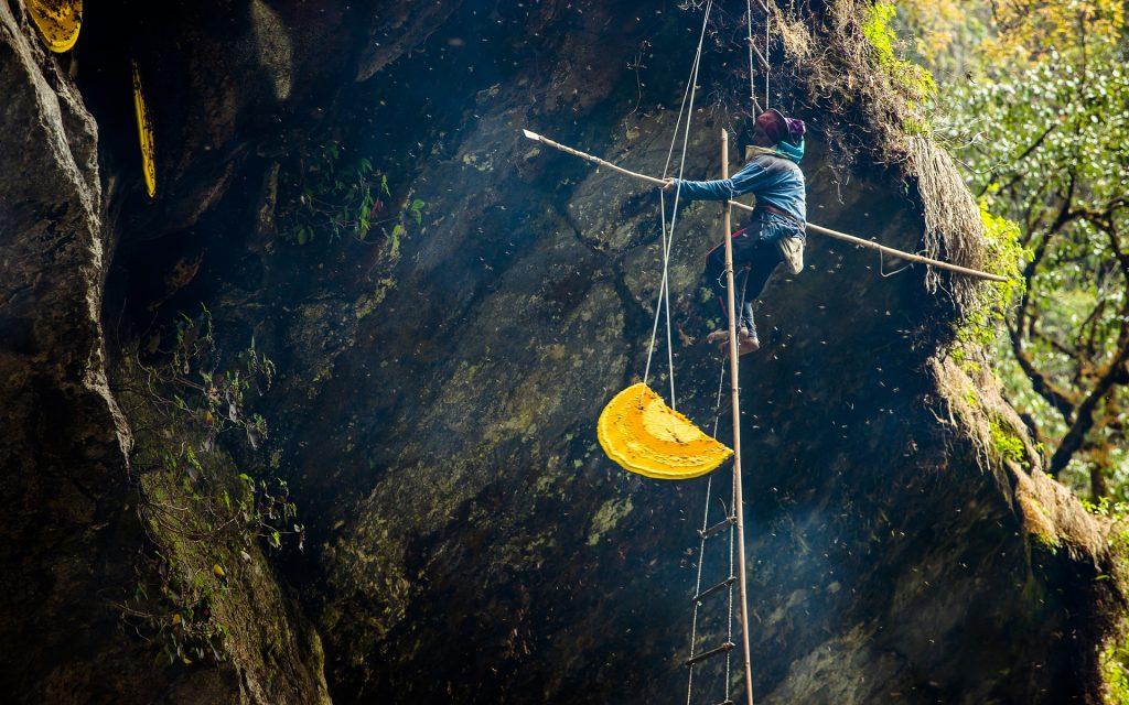 عسل نپال گرانترین عسل جهان