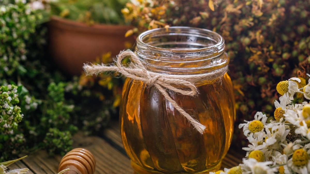 خواص عسل در سنگ کلیه